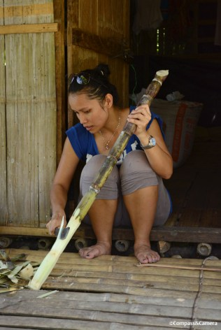 Cutting sugarcane