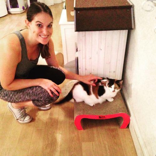 Meeting Mumma Cat Mue