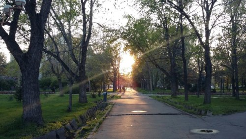 Oak Park, Bishkek