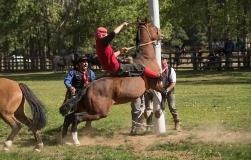 Rodeo in Cochrane