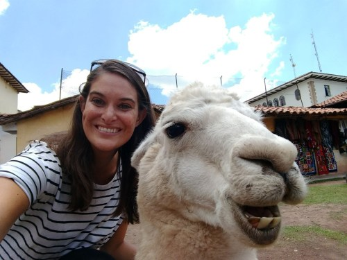 Llama selfie in Cusco