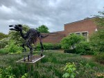mcclung museum