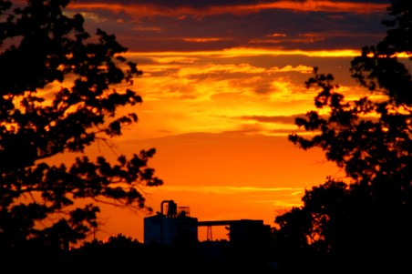 Sunset on the ND Mill through the trees.