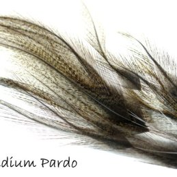 Coq De Leon (CDL) Feather Bundle (12 Feathers)