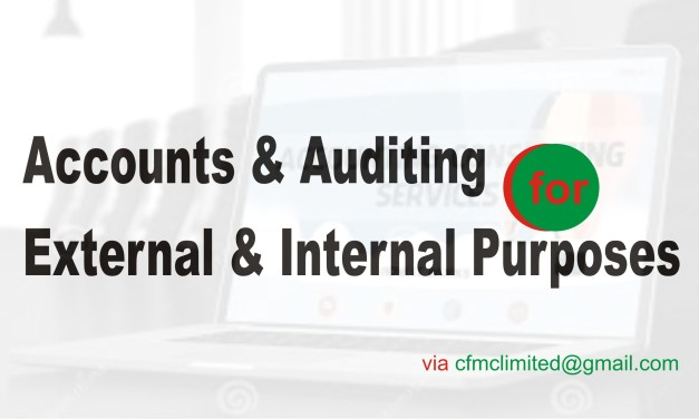 How Much Do YoHow Much Do You Need Accounting and Auditing Services?u Need Accounting and Auditing  Services