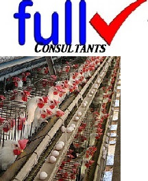POULTRY FARMING BUSINESS: FREE BUSINESS PLAN TEMPLATE