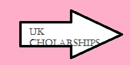 7 Reasons Why Applicants Fail Commonwealth Split-Site (Phd) Scholarship Interview