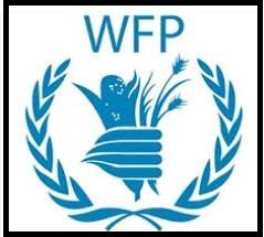 Security Associate G6 Maiduguri Borno (72715) @ UN World Food Programme (WFP)