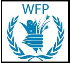 Security Operations Support Officer - NOA at UN (WFP) - Borno: 72714 & FCT Abuja 72713