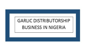 How to join Garlic Distributorship Business in Nigeria