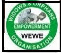 2018 Widows and Orphans Empowerment Organisation (WEWE) Recruitment/Quality Improvement Director @  WEWE Port Harcourt, Rivers