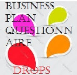 LEARN HOW TO WRITE EVERY BUSINESS PLAN QUESTIONNAIRE/ A TRAINING ON HOW TO WRITE BUSINESS PLAN QUESTIONNAIRE