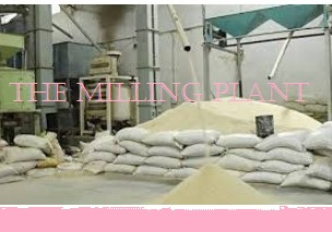 Business plan for rice mill Processing Business in Nigeria/Rice Mill Processing Business Business Plan with Feasibility studies
