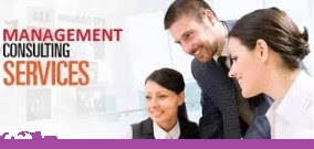 What Business Management Consultants do for you?