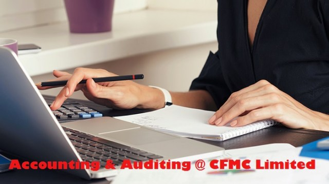 Importance of Auditing system for Your Company