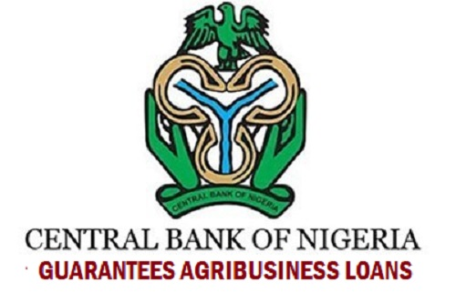 FG Provides N2.3 trillion stimulus package and survival funds for MSMEs