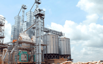 5 tons per day Rice mill business plan for Nigerians