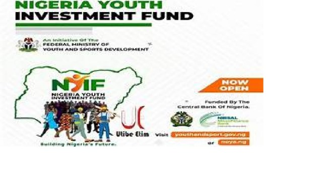 Sample Business plan Template for Nigerian Youth Investment Fund