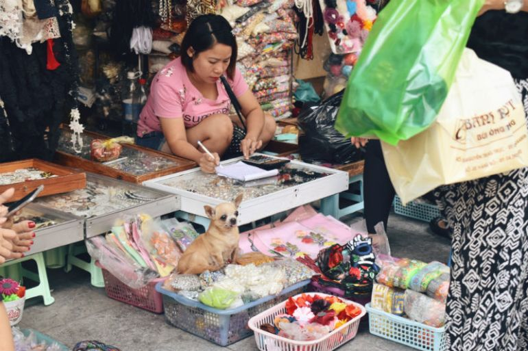 small dog shopping street old quarter hanoi