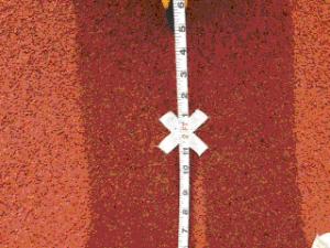 RJ2-PlaceanX