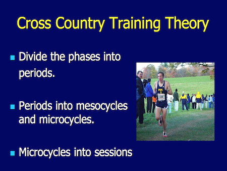 Cross Country Training Phases and Periods