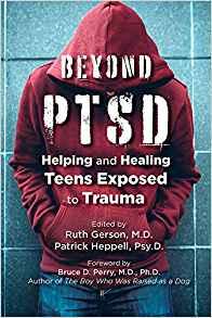beyond ptsd-book