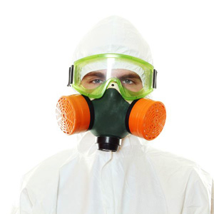 asbestos and mold services