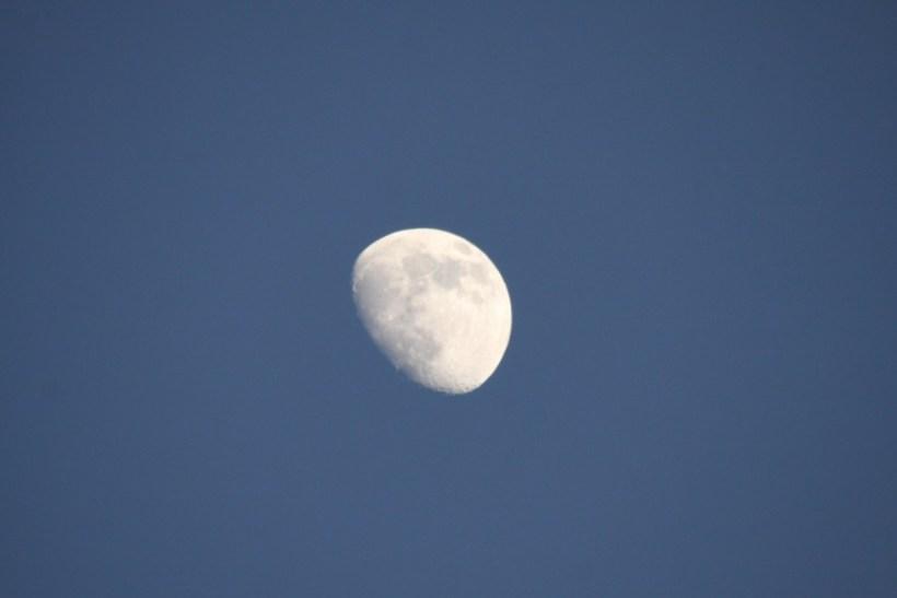 Half Moon over Praia do Pego