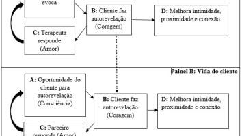 FAP – o modelo ACL e a mudança de comportamentos na vida do cliente 19