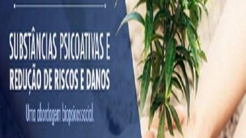 Curso: Substâncias psicoativas e redução de riscose danos: uma abordagem biopsicossocial 13