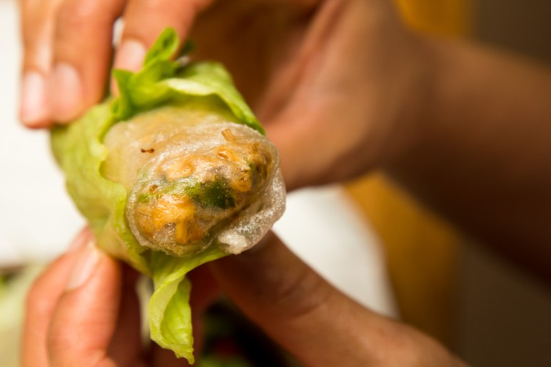 Vietnamese Sping Rolls