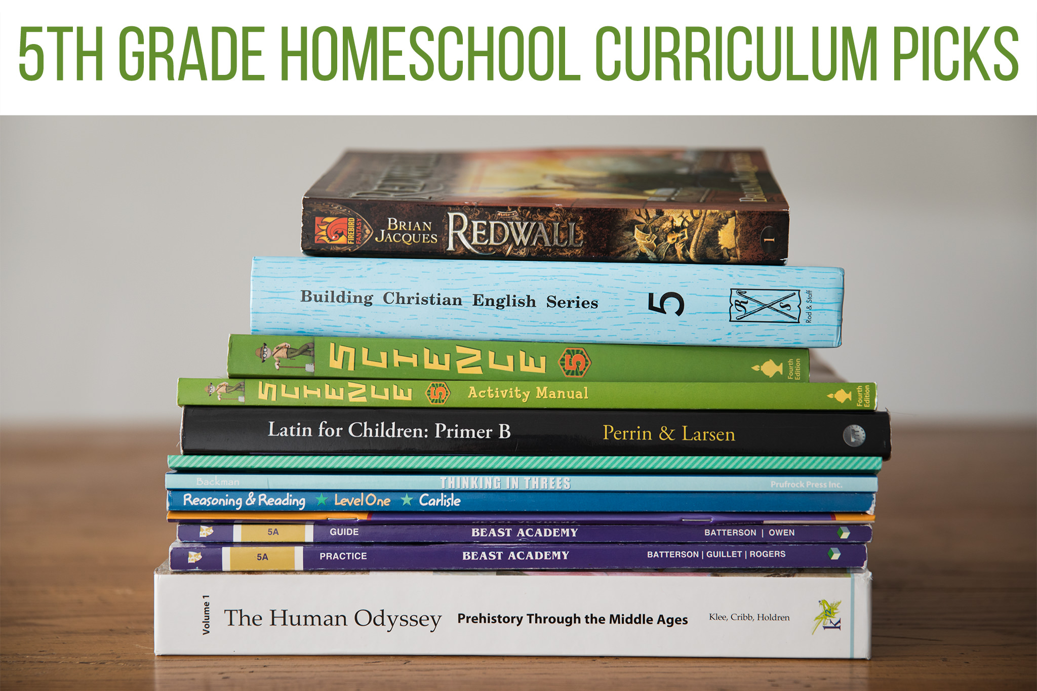 Our 5th Grade Homeschool Curriculum