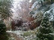 Garden entrance on a snowy day