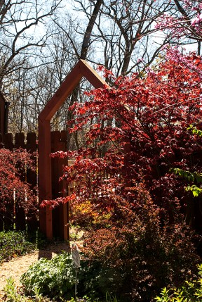 Gateway and Bloodgood Maple