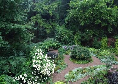 August garden in bloom
