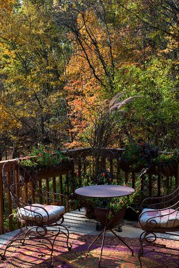 The upper deck and woodland