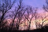solsticesunset2