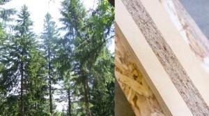 Maine Mass Timber Event Photo