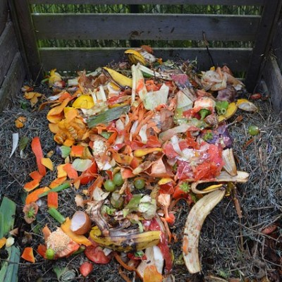 Keeping Fruit Flies Out of Compost