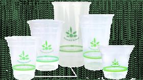 Emerald Brand Emerald Cold Cups