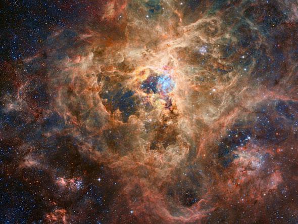 Robert Gendler Photo Of The The Tarantula Nebula A Vast