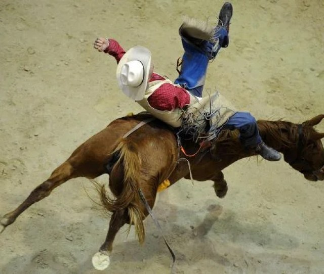 Bareback Rider From Australia