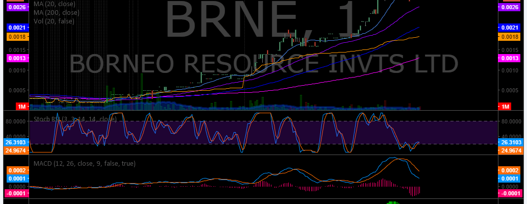 $BRNE, Stock, Chart, Trading, Results, Stocks