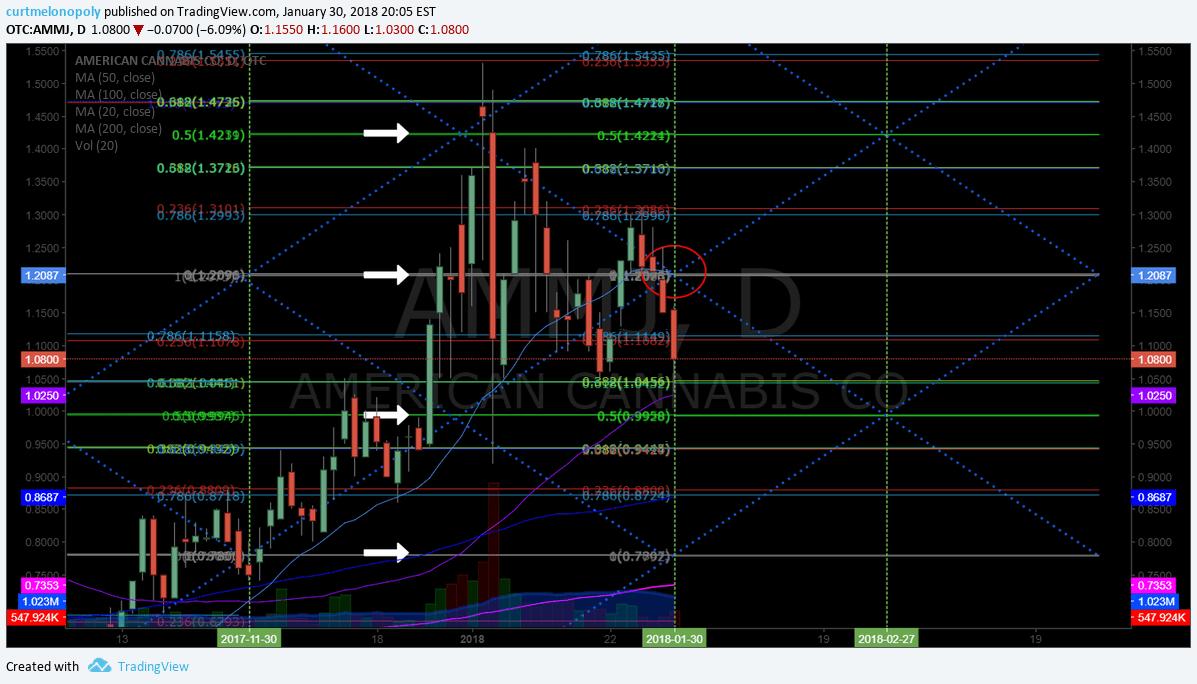 $AMMJ, swing, trading, chart, model