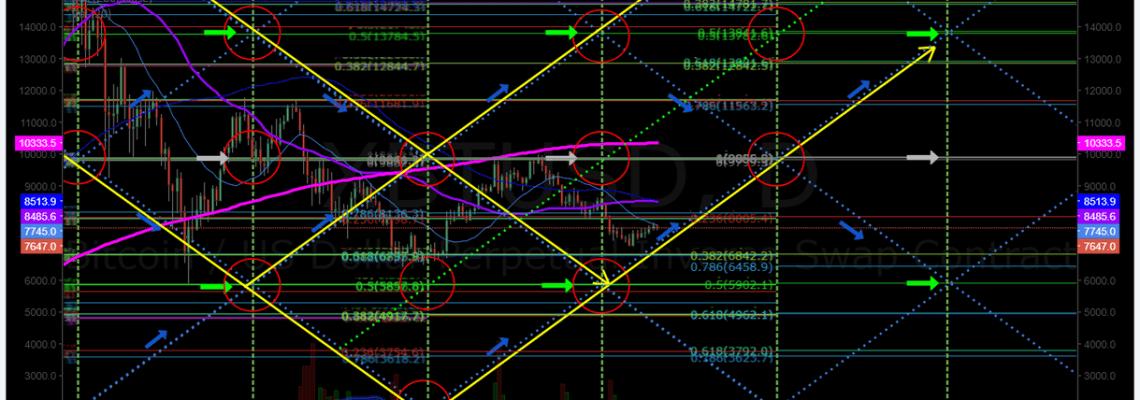Bitcoin, Algorithm, Daily, Chart, BTC