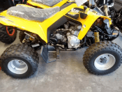 Can Am 250 DS 2014