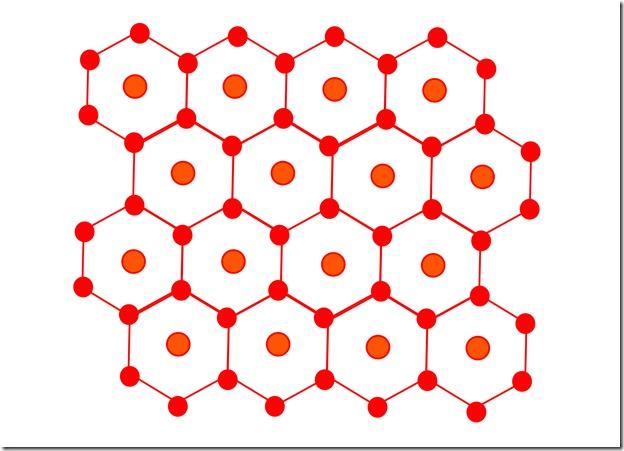 structure hexagonale du muscle