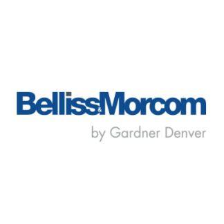 Bellis & Morc
