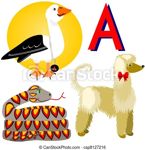 A Afghan Albatross Anaconda Illustration Of Animals That Start With The Letter A Afghan Albatross And Anaconda