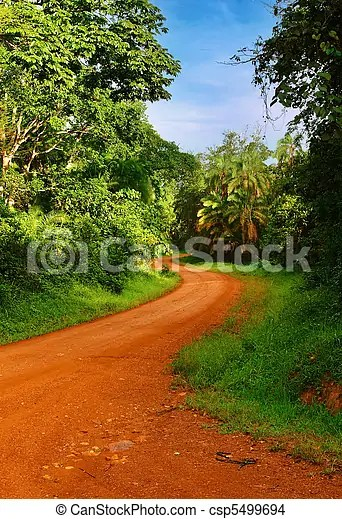 Watch landscaping from diy landscaping budget tips 02:10 landscaping budget tips 02:10 cutting corners isn't the best way to end up with a stellar landscape. African Road Landscape With Rainforest And Road Uganda Canstock